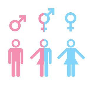 Transgender-Fieber